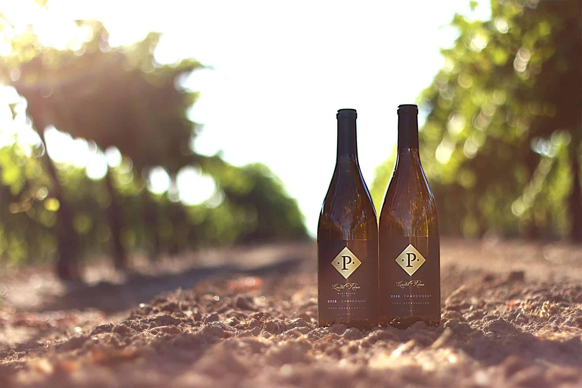 two bottle of wine in vineyard