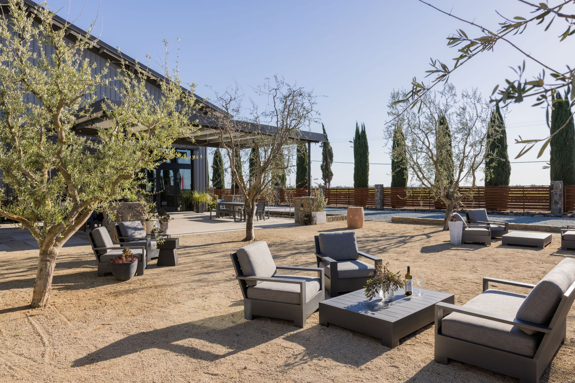patio furniture and olive trees